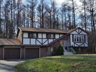 Extra Large Home! Close to Everything in the Area - Cresco vacation rentals