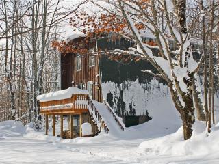 Bear Summit - Bessemer vacation rentals