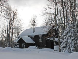 Ski Inn - Bessemer vacation rentals