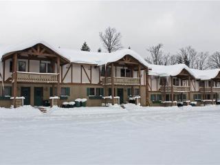 Alpen Villa 5 - Bessemer vacation rentals