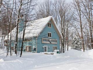 Mountain View - Bessemer vacation rentals