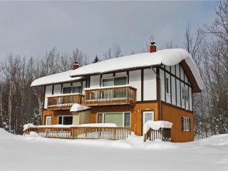 Trailview 2 - Upper Peninsula Michigan vacation rentals