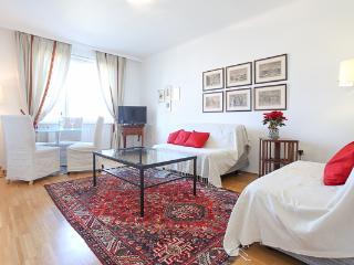 Ferdinandstr 10 min,/ the Stephanspl. innere stadt - Vienna vacation rentals