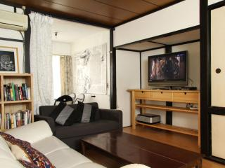 BIG House 3 Bedrooms Roppongi Shibuya - Minato vacation rentals