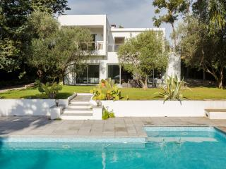 Spacious modern villa near Mougins - Mougins vacation rentals