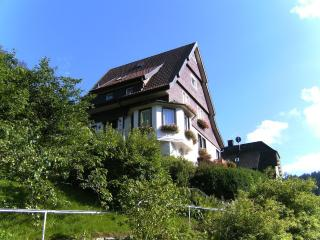 Double Room in Triberg im Schwarzwald - central, tranquil, nice view (# 4617) - Triberg vacation rentals