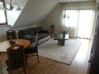 Vacation Apartment in Weimar - 904 sqft, clean, hygienic, welcoming (# 5420) - Jena vacation rentals