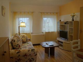Vacation Apartment in Ribnitz-Damgarten - 538 sqft, quiet, comfortable, friendly (# 5447) - Elmenhorst vacation rentals