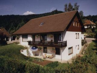 Vacation Apartment in Alpirsbach - 452 sqft, quiet, sunny, comfortable (# 5495) - Alpirsbach vacation rentals