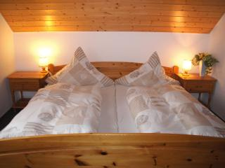Vacation Apartment in Triberg im Schwarzwald - 495 sqft, comfortable, modern, fully equipped (# 5497) - Donaueschingen vacation rentals
