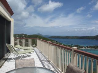 PENTHOUSE. BEST Views+ Granite kitchen + FREE GYM - Saint Thomas vacation rentals