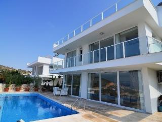 Mediterranean Prestige Range Villas, Kalkan - Kalkan vacation rentals