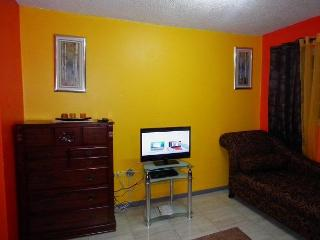 Lovely Apartment in Kingston - Kingston vacation rentals