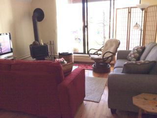 Affordable Quiet Rental in Aspen - Aspen vacation rentals