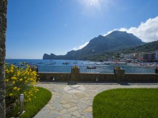 La vita è bella! Simply a dream! Direct access to the sea - V729 - Massa Lubrense vacation rentals