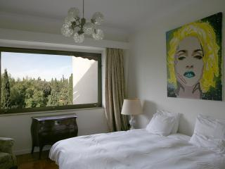 Stunning apt with large balcony & great views - Athens vacation rentals
