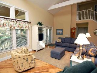 233 Beachside Home-4 Bedroom / renovated & additional 1000 sq ft added. - Hilton Head vacation rentals