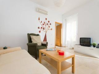 [24] Fantastic apartment in the bohemian area - Seville vacation rentals