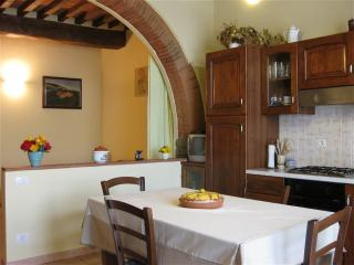 Typical renovated apartment in the heart of Tuscan - Greve in Chianti vacation rentals