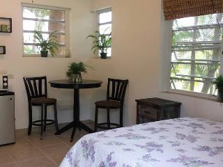 Cozy Room with Oceanview - Rincon vacation rentals