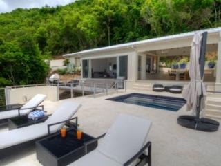 Comfortable 3 Bedroom Villa with Private Pool in Tortola - Tortola vacation rentals