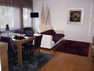 Contemporary deluxe flat in Coimbra - Coimbra vacation rentals