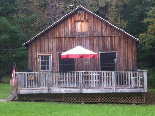 Country Cabin with private Lake access Cabin #2 - Lake Huntington vacation rentals