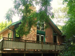 Paddler's Lane Chalet - Confluence vacation rentals