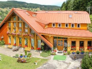 Pension u Veselych - Pec pod Snezkou vacation rentals