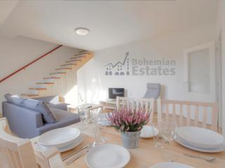 Baker Apartment - Brno vacation rentals