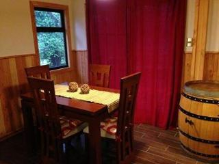 Beautiful Cottage - Villarrica vacation rentals
