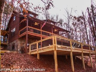 BEAR HAMMOCK- 4BR/3BA- LUXURY CABIN WITH A BEAUTIFUL MOUNTAIN VIEW, POOL TABLE/PING PONG, WET BAR, WOOD BURNING FIREPLACE, GAS & CHARCOAL GRILLS, HOT TUB, AND PET FRIENDLY! ONLY $175 A NIGHT! - Blue Ridge vacation rentals