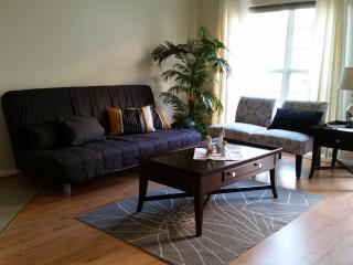 Family friendly townhouse close to DC - Arlington vacation rentals