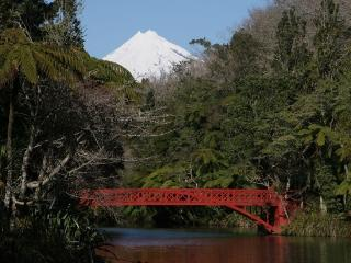 Tree Tops - New Plymouth vacation rentals
