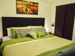 Modern Apartment - Granada vacation rentals