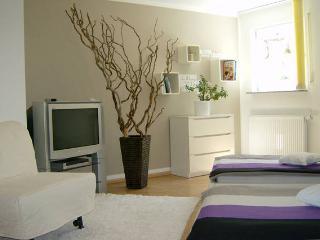 Ambitious Apartment - Bondorf vacation rentals