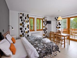 Blanko projekt s.r.o. - Jindrichuv Hradec vacation rentals