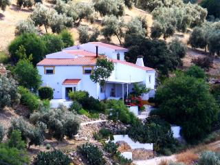 Casa Con Guino - House with a Wink - Alcaudete vacation rentals