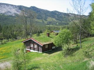 LIE HYTTEUTLEIGE - Amli vacation rentals