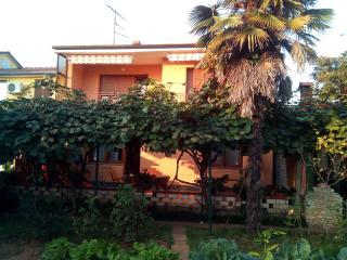 APARTMENT 400M FROM BEACH - Fazana vacation rentals