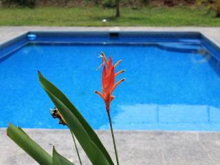 Costa Rica Vacation Rental - Esterillos vacation rentals
