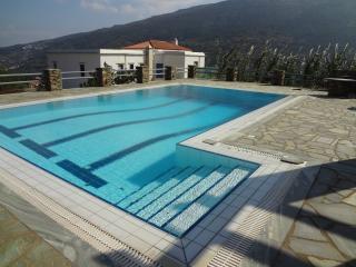 Αξέχαστες διακοπές με γεύση πολυτέλειας. - Andros Town vacation rentals