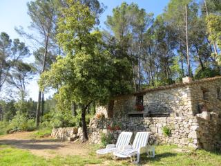 Rural Hideaway Cottage, Lorgues, Provence, France - Lorgues vacation rentals