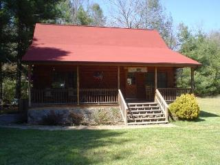 Gorgeous Secluded Mountain Cabin on Snowbird Creek - Hayesville vacation rentals