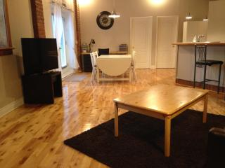 Large 2 bedrooms near Mont-Royal Metro Station - Montreal vacation rentals