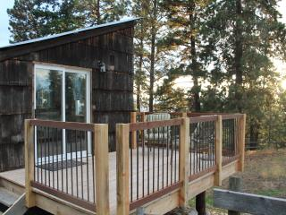 Tiny House - for nature lovers - Silver Star Mountain vacation rentals