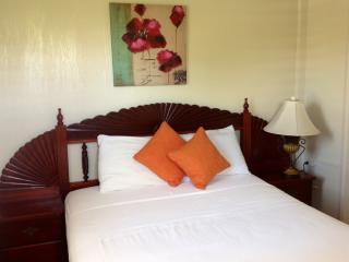 Home Away -Charming One Bedroom Apartment - Saint Joseph vacation rentals