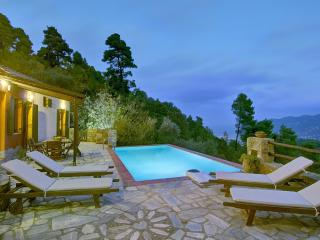Unique pool villa Arktos - Potami vacation rentals