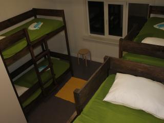 1-iy Sakhalinskiy Hostel - Yuzhno Sakhalinsk vacation rentals