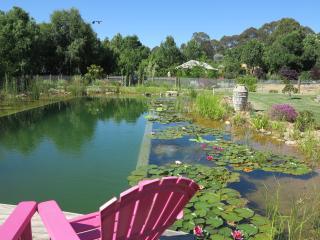 Planetrees Lodge - Beechworth vacation rentals